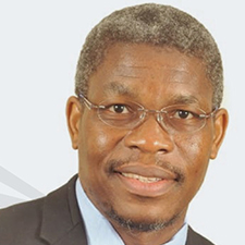 Prof Fulu Netswera